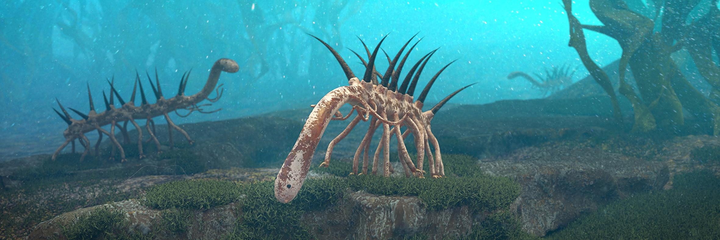 The spiky 14-legged Hallucigenia